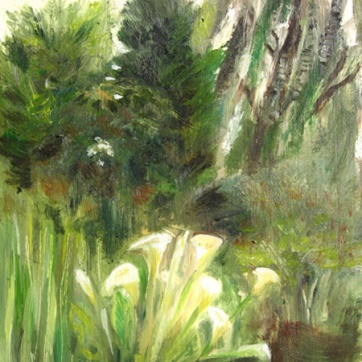 Callas in Garden, oil on board, 8 by 6 in. Emilia Kallock 2006