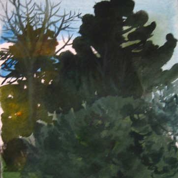 Dark Trees 1, watercolor on paper, 12 by 12 in. Emilia Kallock 2006