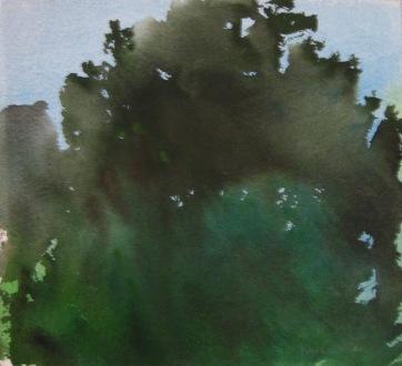 Dark Trees 2, watercolor on paper, 12 by 12 in. Emilia Kallock 2006