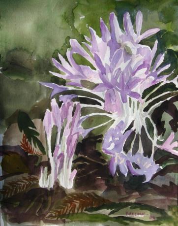 Fall Crocus, watercolor on paper, 8 by 6 in. Emilia Kallock 2008