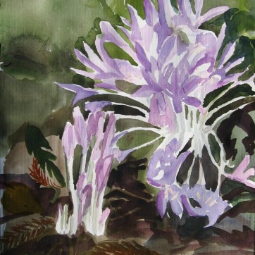 Fall Crocus, watercolor on paper, 8 by 6 in. Emilia Kallock 2008