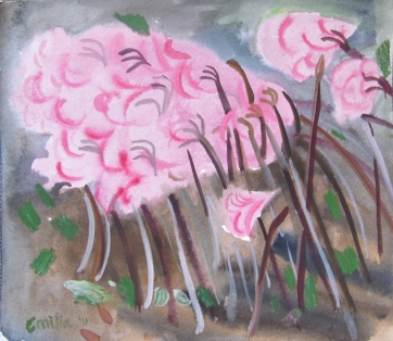 Nerene Lilies 3, watercolor on paper 9 by 11 in. Emilia Kallock