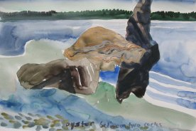 Oyster Study, watercolor on paper, 18 by 24 in. Emilia Kallock 2008