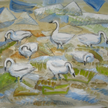 Swans, charcoal and watercolor on paper, 24 by 32 in. Emilia Kallock 2007