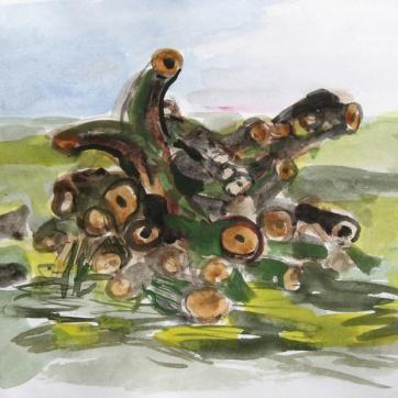 Tree Post, watercolor on paper, 8 by 12 in. Emilia Kallock 2006
