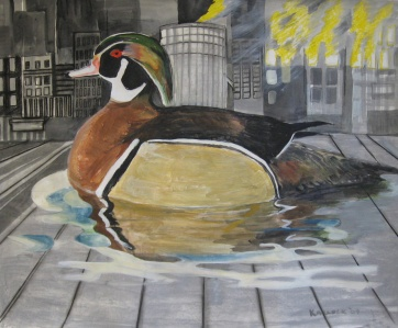 Wood Duck, watercolor and chalk pastel on paper, 24 by 30 in. Emilia Kallock 2007