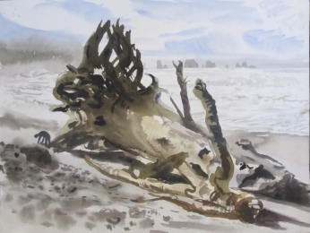 Driftwood at Ocean Beach, watercolor on paper, 12 by 14 in. Emilia Kallock 2014