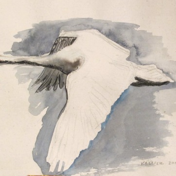 Swan 2, watercolor on hemp paper, 6 by 8 in. Emilia Kallock 2016