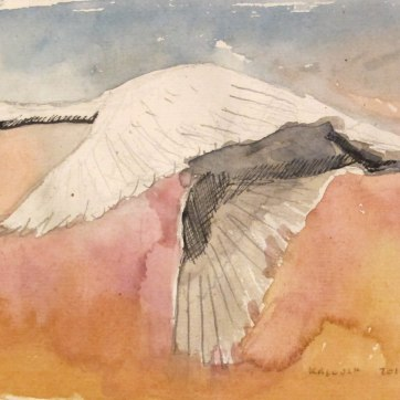 Swan 3, watercolor on hemp paper, 6 by 8 in. Emilia Kallock 2016