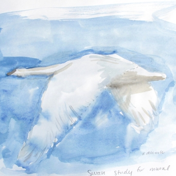 Swan 11, watercolor on paper, 8 by 10 in. Emilia Kallock 2016