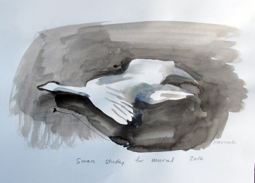 Swan 14, watercolor on paper, 8 by 10 in. Emilia Kallock 2016