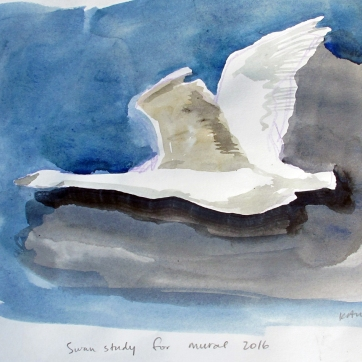 Swan 9, watercolor on paper, 8 by 10 in. Emilia Kallock 2016