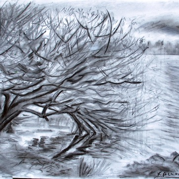 Greenlake Winter, charcoal on paper, 18 by 24 in. Emilia Kallock 2009