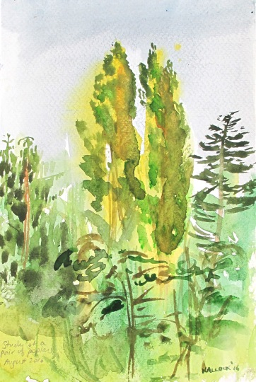 Study of Two Poplars, watercolor on paper, 8 by 5 in. Emilia Kallock 2016