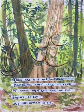 Trees Are Not Agricultural Products, watercolor on paper, 12 by 9 in. Emilia Kallock, 2017