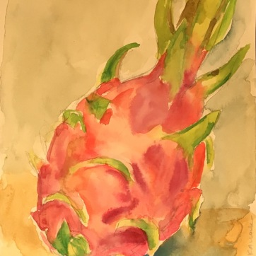 Dragonfruit, Vietnam, watercolor on paper, 8 by 8 in. Emilia Kallock 2018