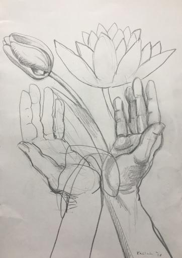 Tulip, Hands 3, pencil on paper, 10 by 8 in. Emilia Kallock 2018 $500