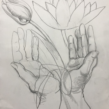 Tulip, Hands 3, pencil on paper, 10 by 8 in. Emilia Kallock 2018 $500