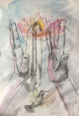 Tulip, Hands 2, pencil on paper, 10 by 8 in. Emilia Kallock 2018 $500