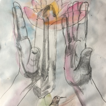 Tulip, Hands 2, pencil on paper, 10 by 8 in. Emilia Kallock 2018 $500