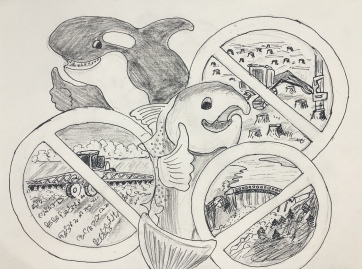 Orca and Salmon Cartoon, pen on paper, 8 by 9 in. Emilia Kallock 2018